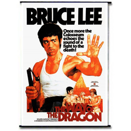 Bruce Lee Chinese Dragon Wall Scroll Wallscroll Poster