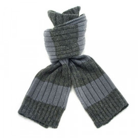2 Coloured Stripe Scarf (GRAY & GRAYISH BLUE)