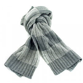 2 Coloured Stripe Scarf (GRAY)