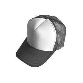 Plain Mesh Ball Cap (GRAY WHITE)