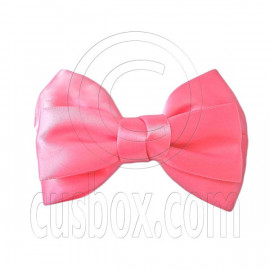 Pair Adorable 4.5inches 11cm Ribbon Bowknot Bow Tie Alligator Hair Clips SALMON PINK